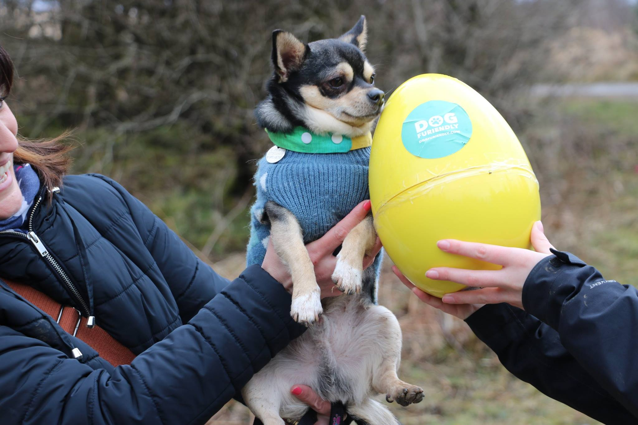 Our Easter Egg Hunt raised £400 for Four Paws South Wales - Dog Furiendly