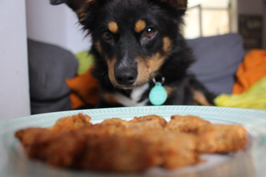 Cheese and Carrot Dog Biscuits Recipe