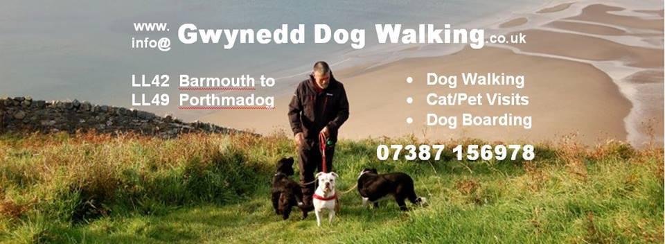 Gwynedd Dog Walking