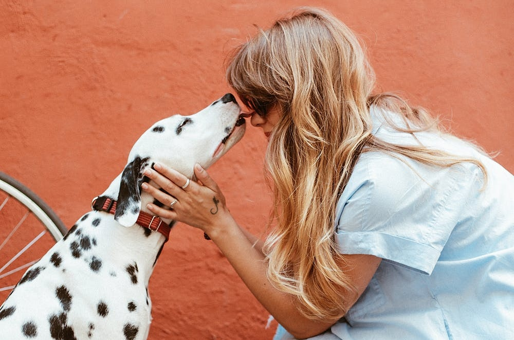 6 New Years Resolutions For You and Your Dog