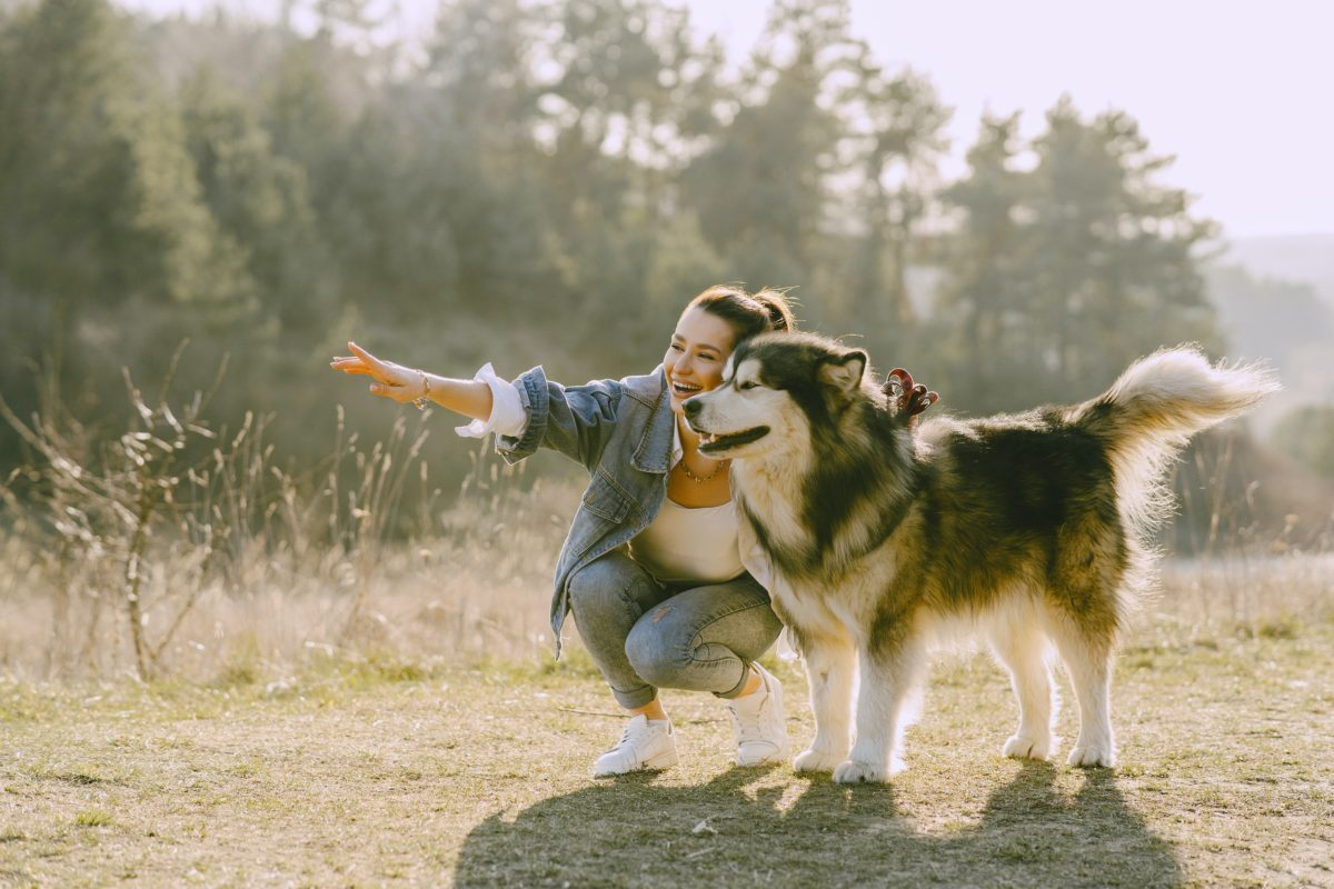 5 Ways Dogs Are Making a Difference in Our Lives