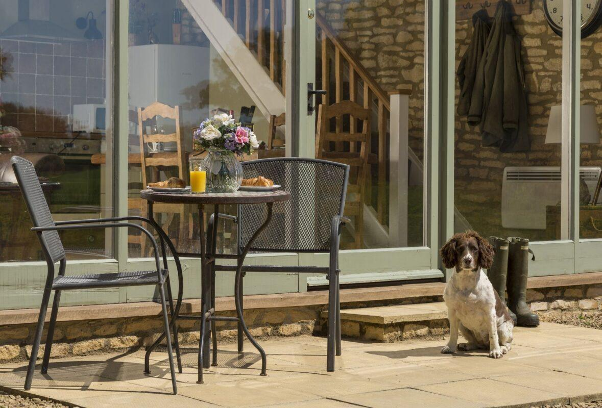 Dog Friendly Holidays in the Cotswolds