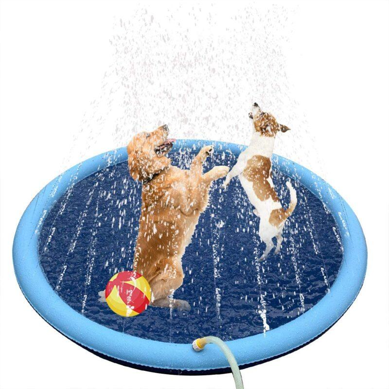 sprinkler to cool down your dog