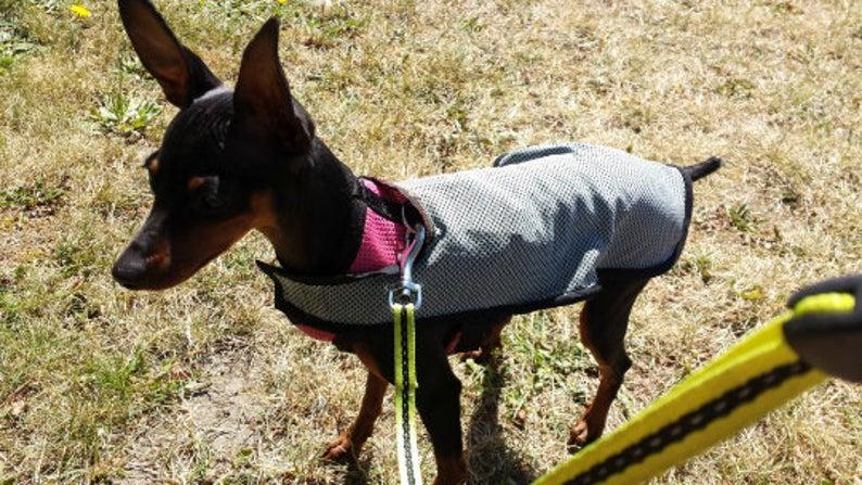 Cooling vest to cool down your dog