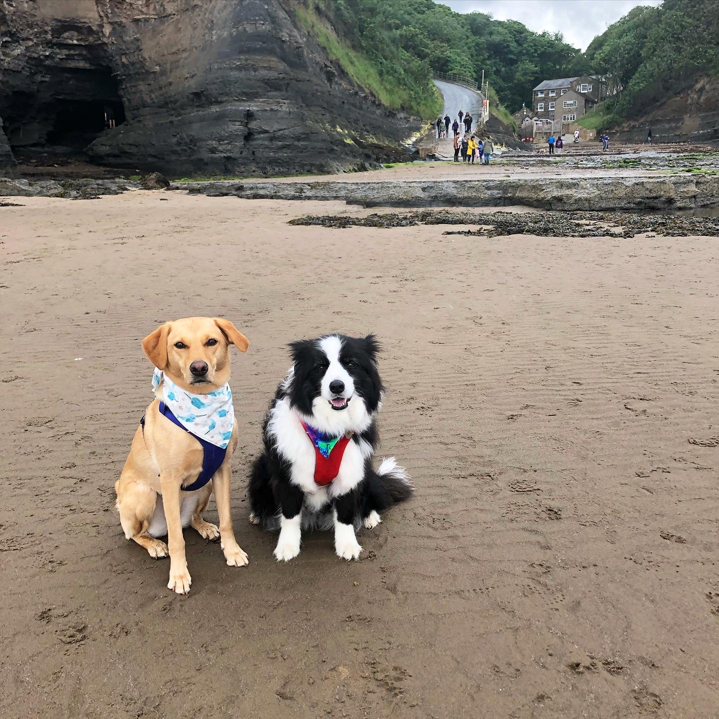 Boggle Hole Beach - One of North Yorkshire's Hidden Gems