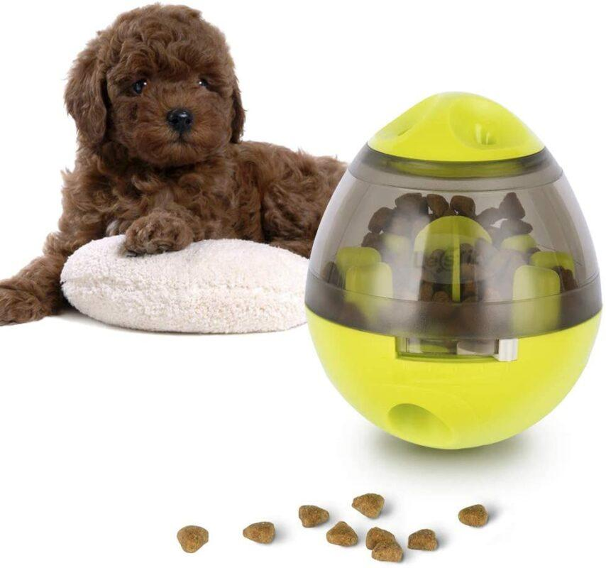 16 Dog Puzzle Toys For Your Clever Pooch