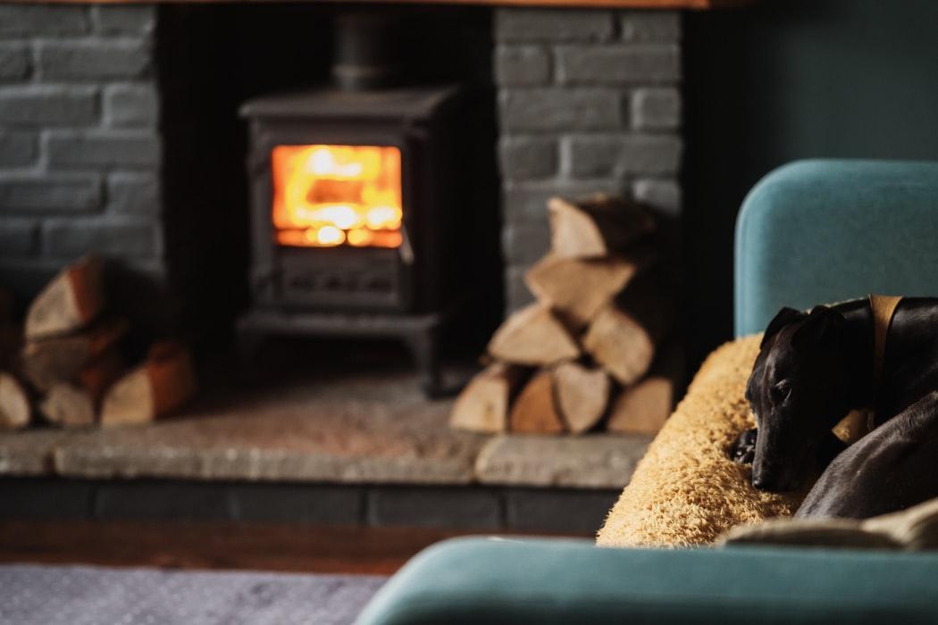 Dog Sitting by Fireplace